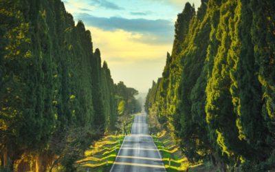 Verreisen mit dem E-Auto – Tipps, Tricks und nützliche Apps